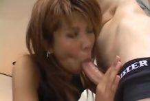 Japanse Seks